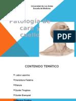 Patologia de Cara y Cuello Seminario Mas Adelantado Listoooooo