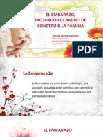 Ponencia El Embarazo InicIando El Camino de Construir La Familia