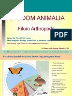 Presentasi Arthropoda Fix1