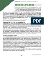 14. Parasitología y Vectores de Transmisión . Ttema 13. Cestodos _2_ OK