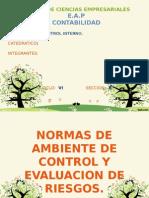 NORMADE DE AMB, CONTROL Y EVALUACION DE RIESGOS 14-01-2015.pptx