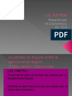Presenttion La Jambe