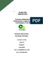 Plan de Negocios2013