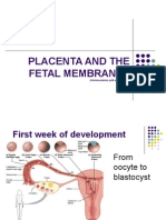 Placenta and Fetal Membranes 2010 1