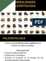 FOSILES paleontologia
