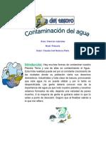 Caza Del Tesoro Contaminacion Del Agua