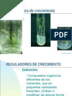 Reguladoresdecrecimiento20131 (1)
