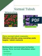 Flora Normal Tubuh Manusia.ppt