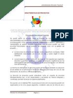 Características de Proyectos Ok