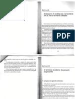 3 Texto Geo2 Brasil Territorio e Sociedade Capitulos x Xi Xii