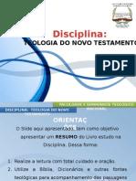 11teologiadonovotestamento-140522162349-phpapp02.pptx