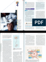 Genetica 02.12.14 Capitolul 4 Pinel.pdf