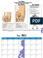 libro de embarazo mes a mes.pdf