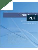 01 - CMO - Cultura e Brasileira e Organizacional