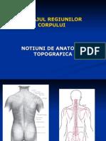 NOTIUNI DE ANATMIE TOPOGRAFICA VF.ppt