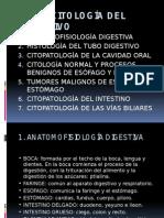 CITOLOGÍA DEL DIGESTIVO