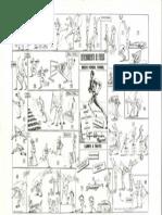 MEDIO FONDO,FONDO.pdf