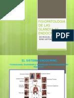 3.1 Sistema Endocrino Hipotalamo-hipofisis