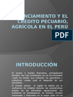 Financiamiento y El Crédito Pecuario, Agrícola