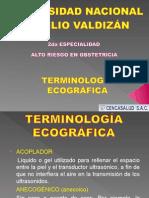 3.- TERMINOLOGIA ECOGRAFICA.ppt
