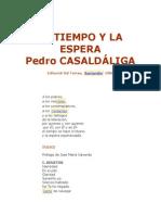 El Tiempo y La Espera - Pedro Casaldaliga