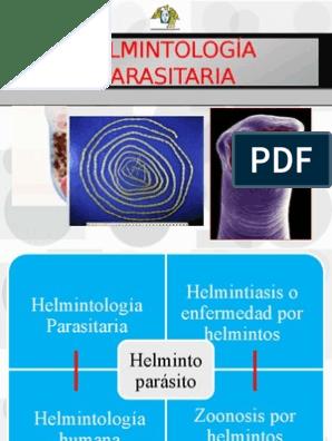 Ppt orvosi helmintológia