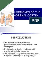Hormones of the Adrenal Cortex 1-13