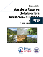 Plantas Mexicanas de La Biósfera Tehuacán Vol 2 (Nom Cient, Comun, Morfolo Imagenes & Usos) @30oK
