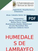 Humedales de Lambayeque y El Perú