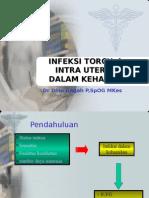 Infeksi Torch Dan Intra Uterine Dalam Kehailan