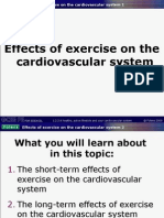 2.2 - Powerpoint D - Effects of Exercise on the Cardiovascular System