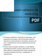 Cercetari Calitative de Marketing