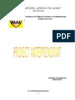 Proiect Antreprenorial