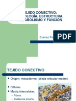 T004 Tejido Conectivo (Suarez)