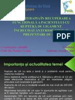 PPT Licenta