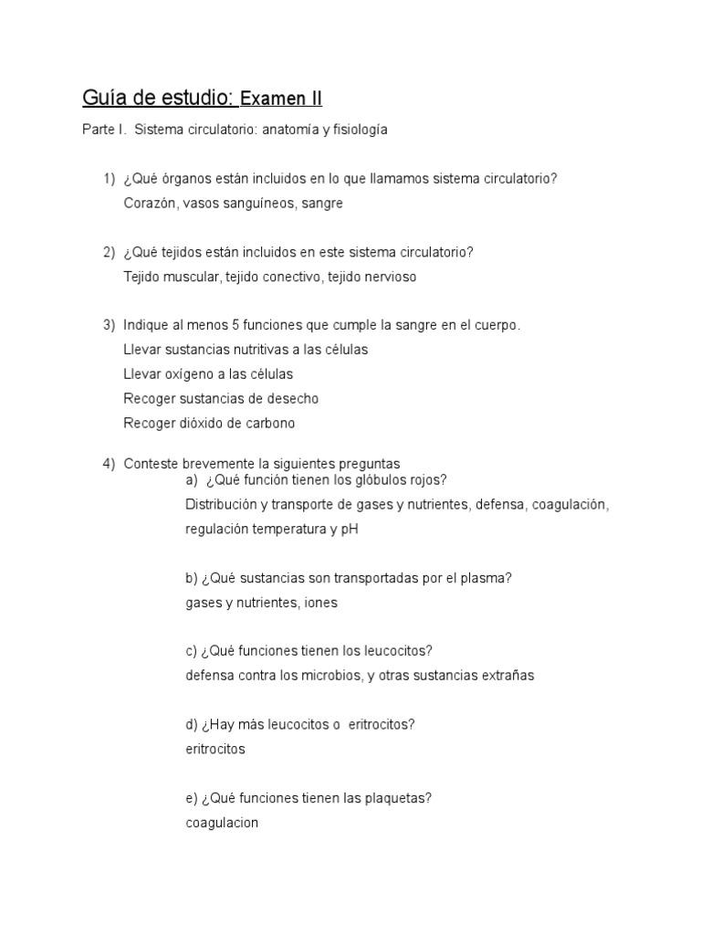 Perfecto Anatomía Y Fisiología Guía De Estudio 2 Ilustración ...