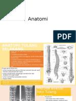 Anatomi tulang belakang