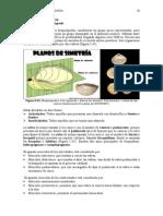 Capitulo 5-3 Nuevos Apuntes Paleontologia