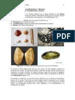 Capitulo 5-4 Nuevos Apuntes Paleontologia