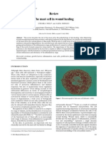 The Mast Cell in Wound Healing (Pages 303–313)