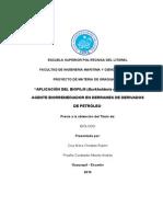 D-43232.pdf