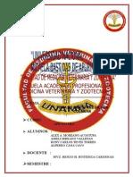 PRACTICA 2.- Extraccion de Muestra de La Colmena