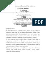 Analisis de La Lopna