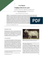 Pemphigus Foliaceus in a Goat (Pages 331–336)