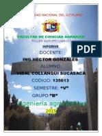 Produccion de Plantones Forestales en Vivero Collanqui