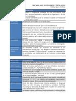 t2. Vocabulario de Lesiones y Patologías