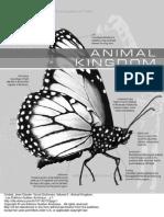Visual Dictionary Volume 3 Animal Kingdom 1 to 36