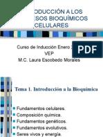 Introducción a Los Procesos Bioquímicos Celulares