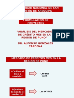 2.Formulación Proyectos (Caja Arequipa)