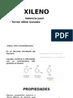 Xileno (Expo)